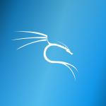 Kali LinuxをUSBからブートする